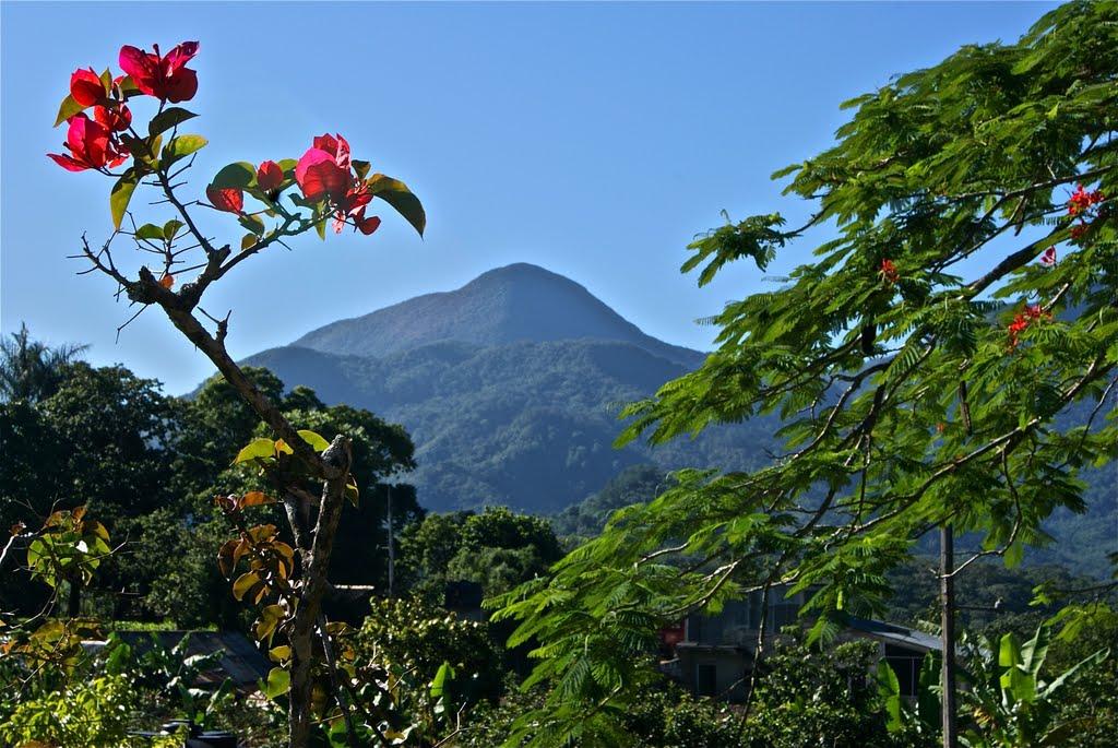 Día internacional de las montañas.