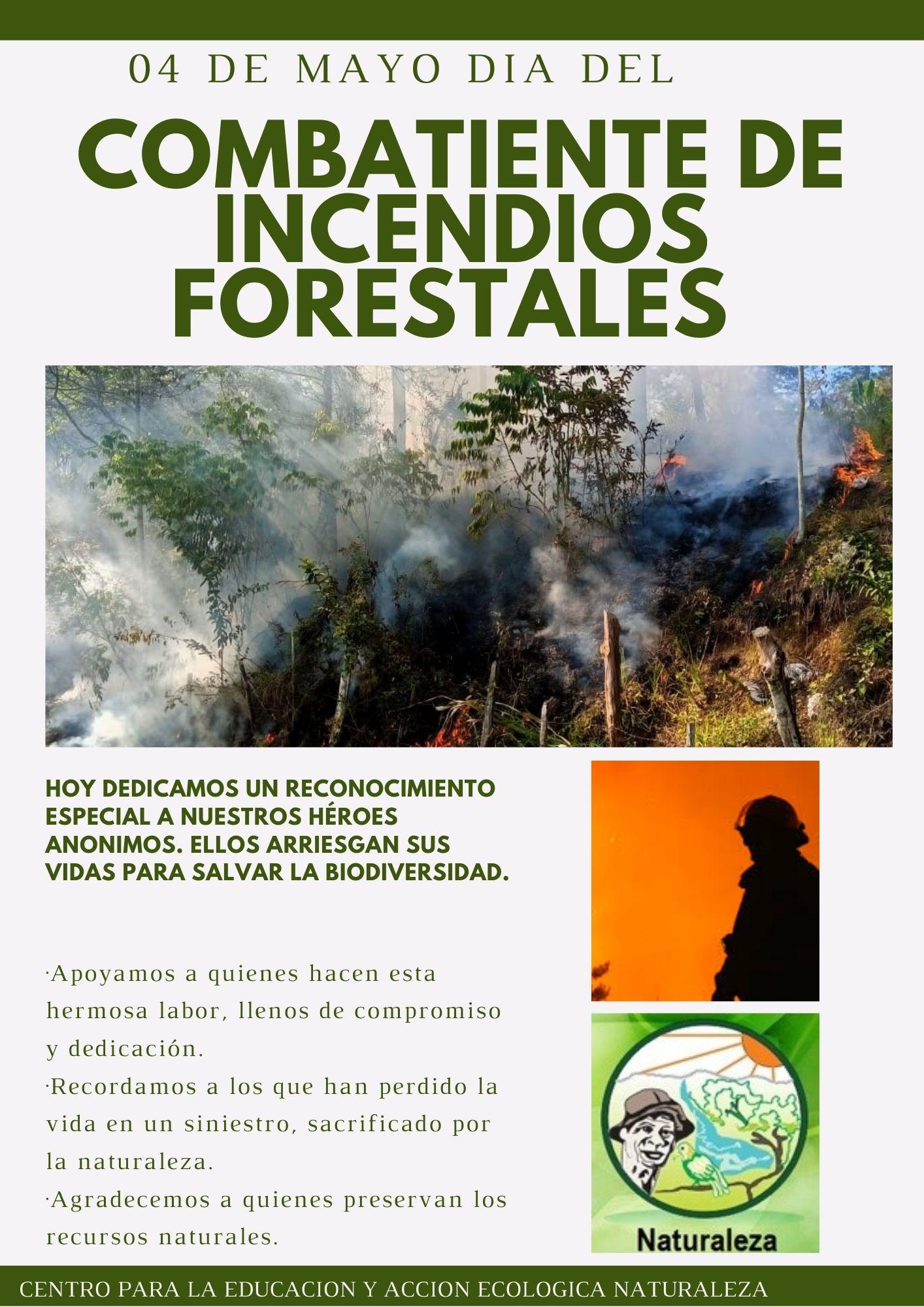 Día internacional del combatiente de incendios forestales.