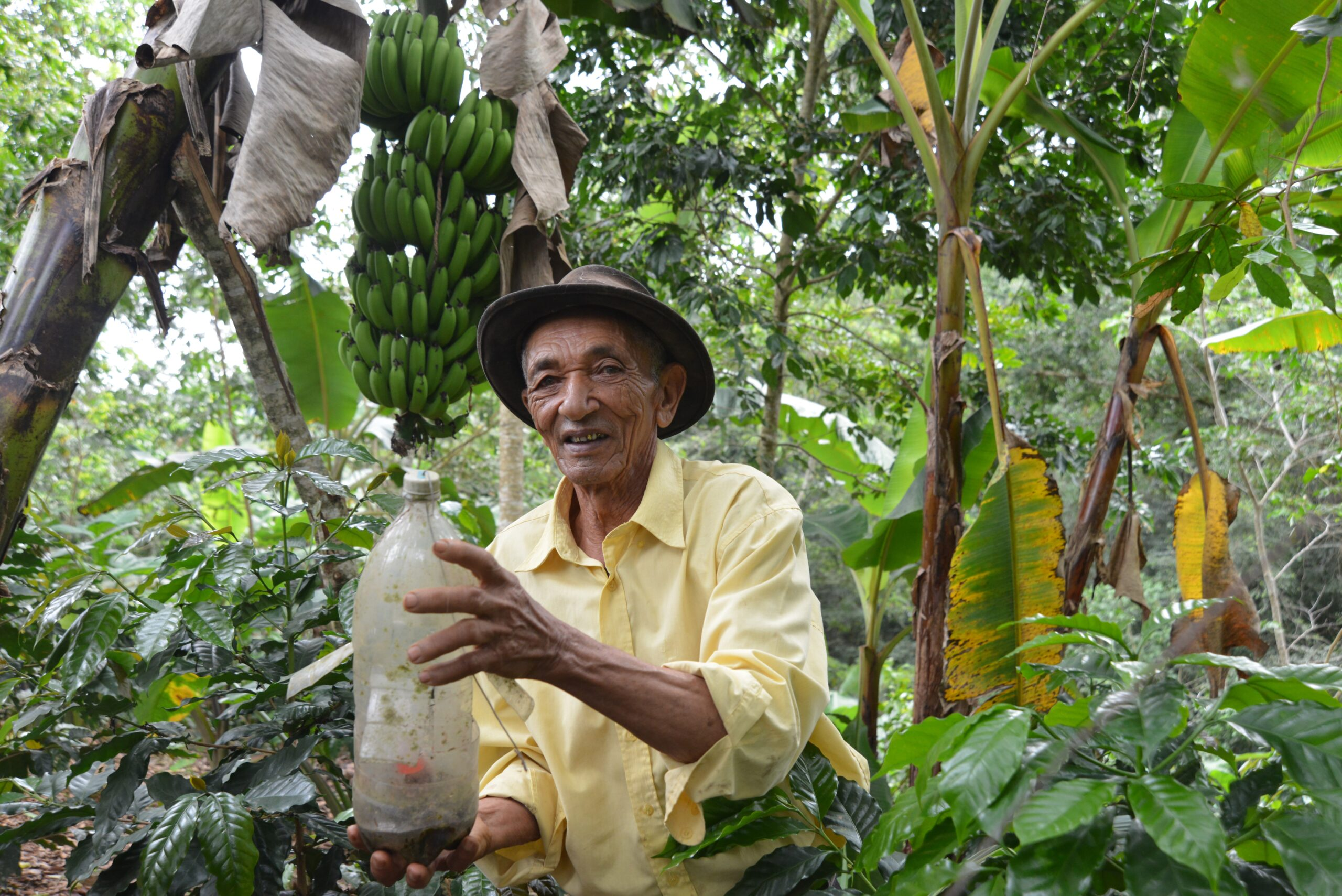 15 de mayo día de San Isidro Labrador patrón del agricultor dominicano