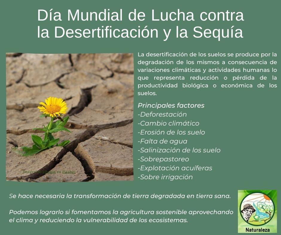 Hoy en el día mundial para prevenir la desertificación y la sequía